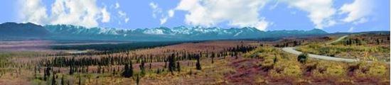 Picture of Alaskan denali national park right