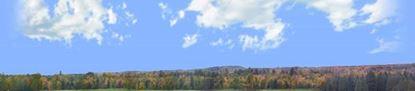 Picture of Autumn treeline in wisconsin left