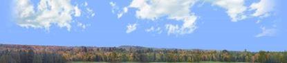 Picture of Autumn treeline in wisconsin right