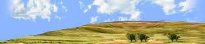 Picture of Buffalo gap national grasslands south dakota left