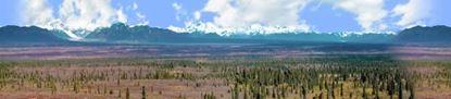 Picture of Alaskan denali national park repeatable