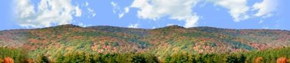 Picture of Autumn landscape in allegheny state park center repeatable