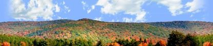 Picture of Autumn landscape in allegheny state park right repeatable