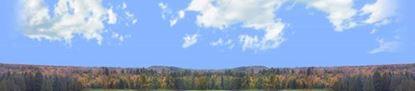 Picture of Autumn treeline in wisconsin repeatable