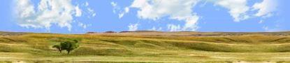 Picture of Buffalo gap national grasslands south dakota left repeatable